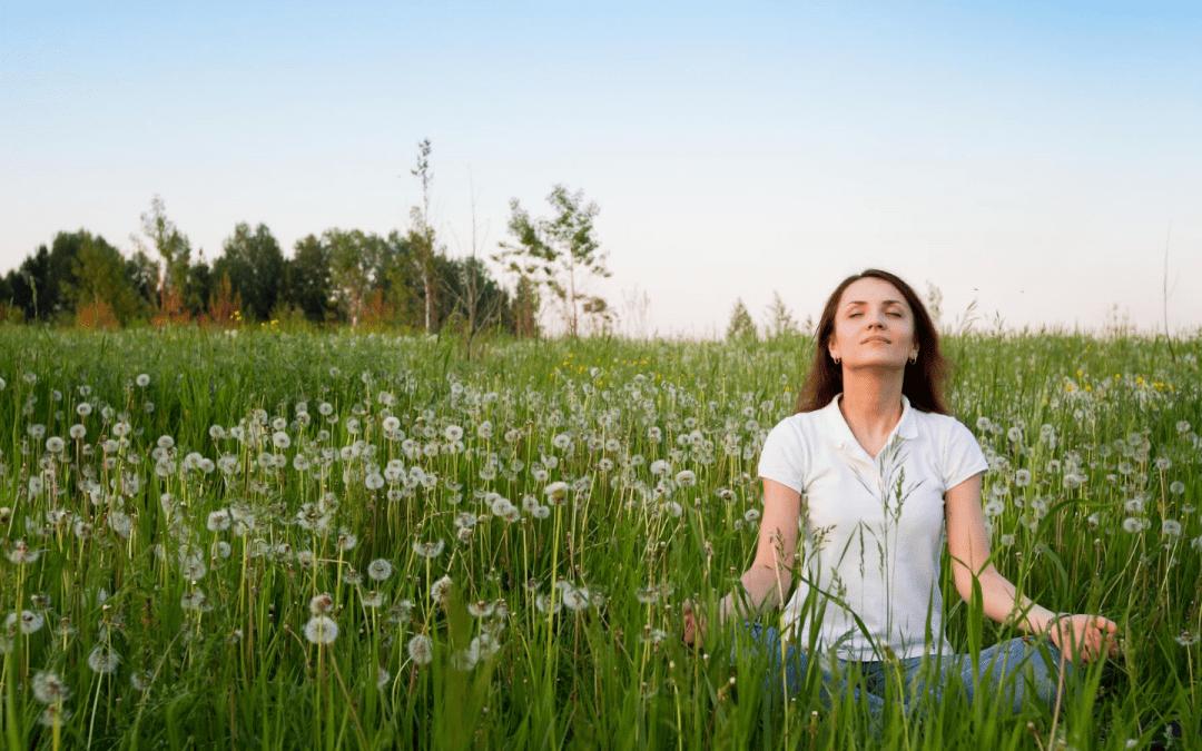 Meditation: A dalily practice